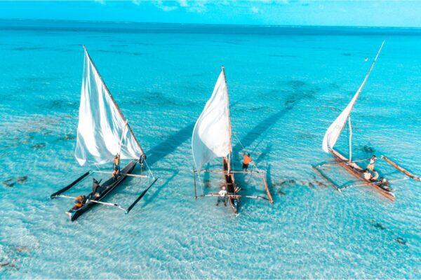 Zanzibar, destination nature en Tanzanie
